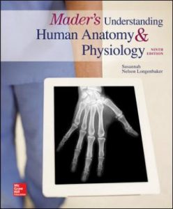 Test Bank for Mader's Understanding Human Anatomy & Physiology 9th Edition Longenbaker
