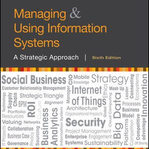 Test Bank for Managing and Using Information Systems 6th Edition Pearlson