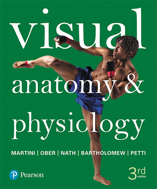 Solution Manual for Visual Anatomy and Physiology 3rd Edition Martini